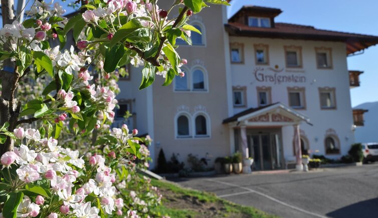 Wellnesshotel Grafenstein